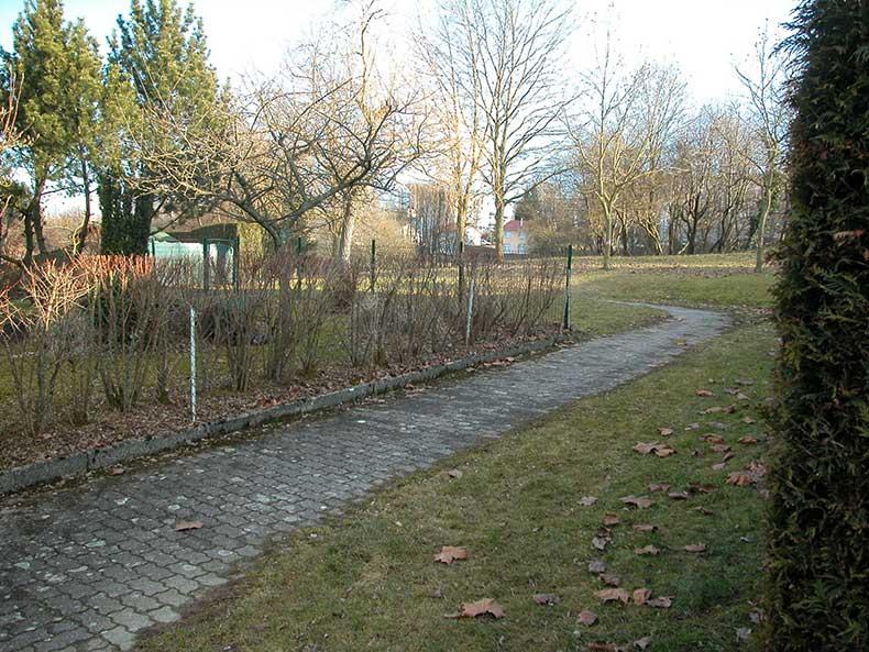Chemin rue des Tulipes et Jonquilles - 28/02/2009